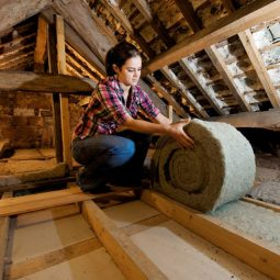 Insulation that's healthy for you, your home and the planet
